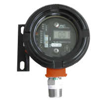 C12 Combustible Gas Transmitter with display