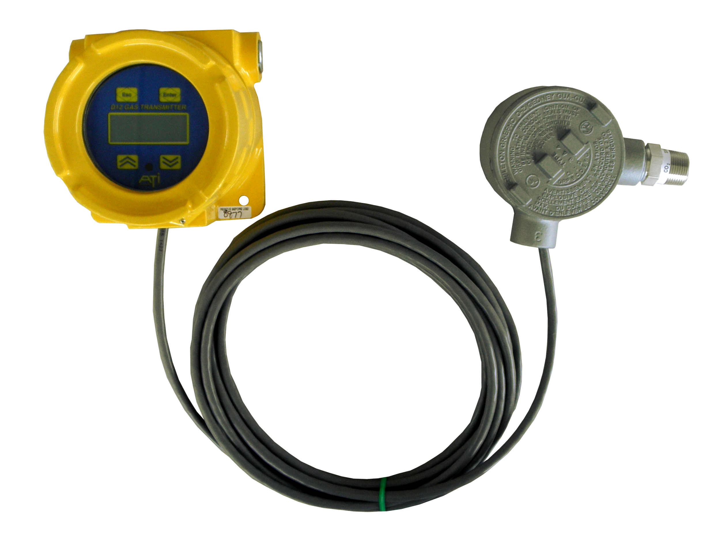 D12 Toxic Gas Transmitter with remote sensor